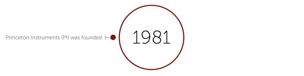 1981 accomplishments