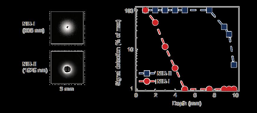 a) Noninvasive time-dependent in vivo NIR-II fluorescence